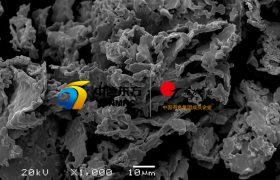 CP-OTIC-FTP钽粉2